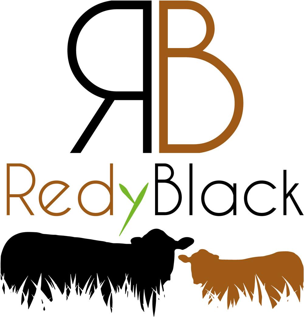 Création d'un logo pour une nouvelle race à viande